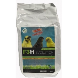 F3H Energy Medium Evolution...