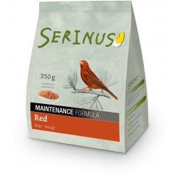 Food Red Maintenance Serinus