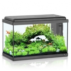 Aquarium ADVANCE LED 50