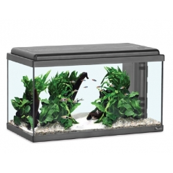 Aquarium ADVANCE LED 60