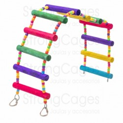 Colored lovebird ladder