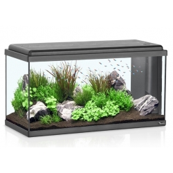 Aquarium ADVANCE LED  80