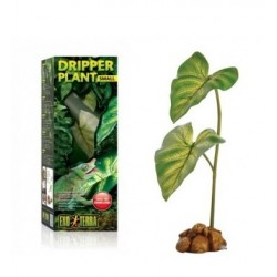 Dripper Plant Small Exo Terra