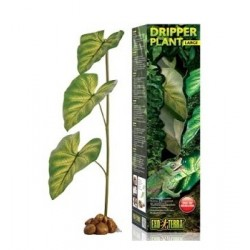 Dripper Plant Large Exo Terra