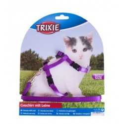 Arnet Leashed Kittens Trixie