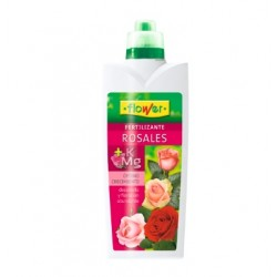 rosebush Fertilizer Flower