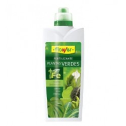 Green plants fertilizer Flower
