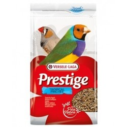 Prestige Tropical Finches...