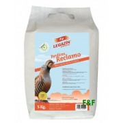 Doves and Partridges