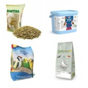 Food (seeds and feed)